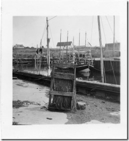 PCR-219 fishing harbor nets drying