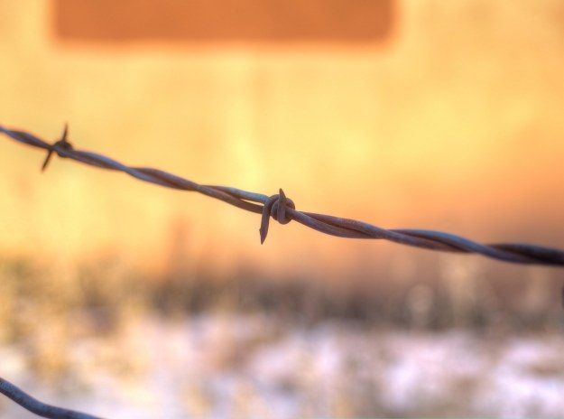 {Image:  close up of a photo of a single barb in a strand of barbed wire.  In the background, and out of focus, is the side of an adobe building.}