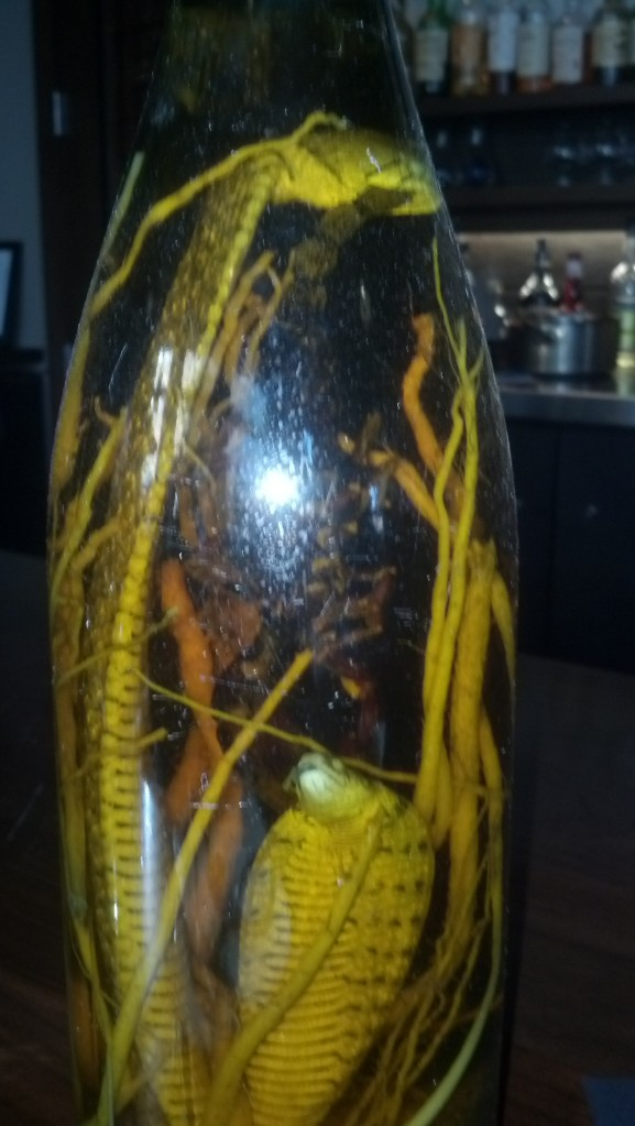 {Image:  a wine bottle with yellow-colored roots and a snake inside.}