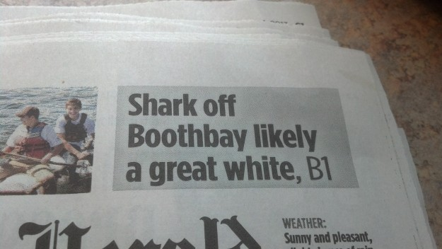 """{Image:  photo of newspaper headline, """"Shark off Boothbay likely a great white, B1.""""}"""