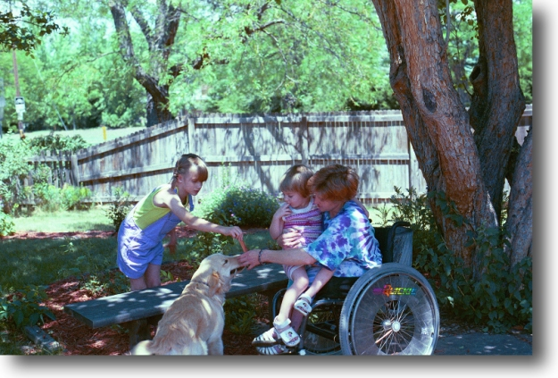 {Image:  A blond woman (sitting in a manual wheelchair) and two blond girls playing with a golden retriever dog under a tree in a fenced yard.  One girl, perhaps two years old, sits in her mother's lap.  The other girl, perhaps 6 years old, holds a toy out to the dog.}