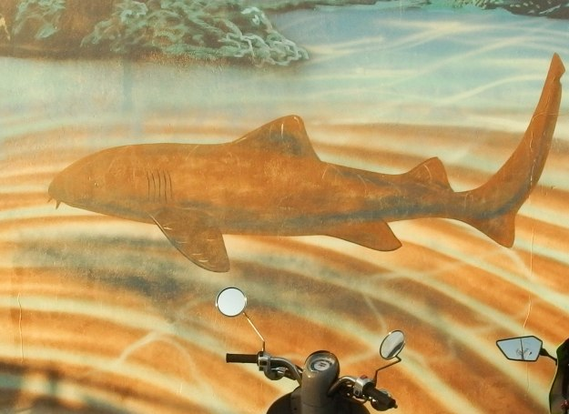 Image: mural painting of shark with motorcycle handlebars and mirrors in the foreground.