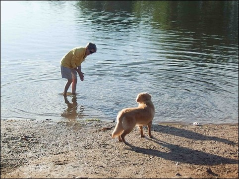 Image:  photo of woman in yellow fleece and khaki shorts standing in a pond trying to coax a golden retriever into the water.