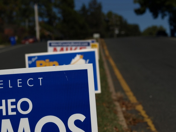 Image:  political signs along the center median of a street.