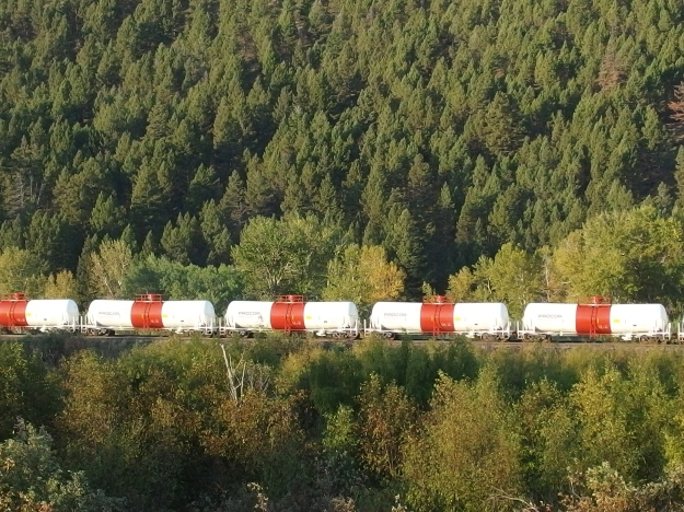 {Image: alternating red and white train cars against a pine covered hill.}