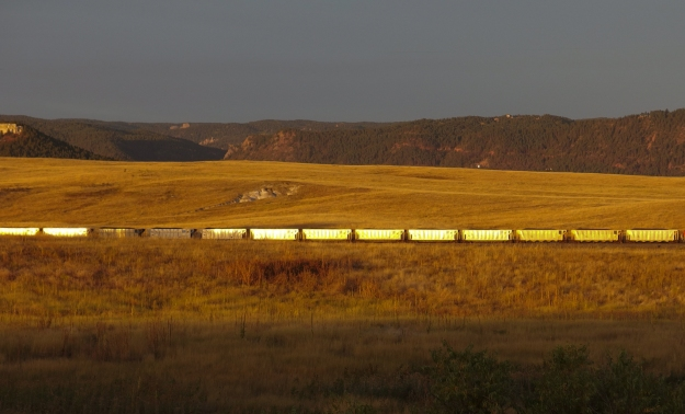 Image: flat brown landscape with train in the middle distance lit up bright yellow in the sunlight.