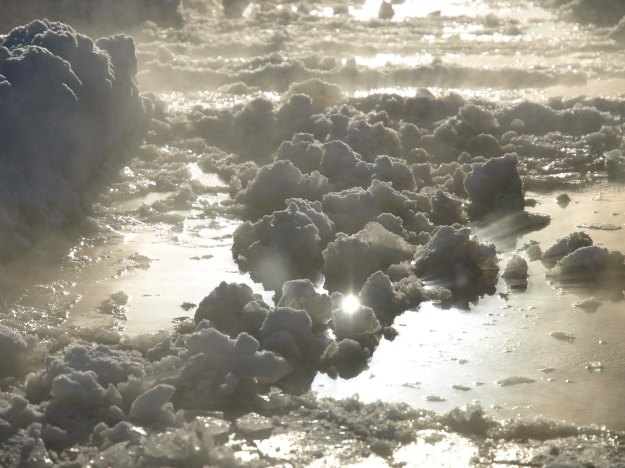 Image: Puddle of slush with chunks of snow photographed at a low angle with sunflares.